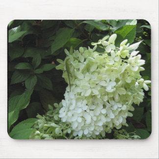 Flor Mousepad del Hydrangea