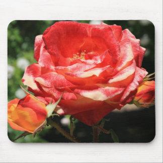 Flor Mousepad del rosa rojo Alfombrillas De Ratones