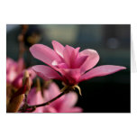 Flor Notecard de la magnolia Tarjeta