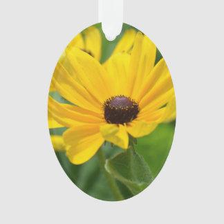 Flor observada negro de Susan