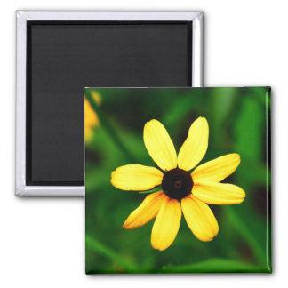 Flor observada negro de Susan Imán Cuadrado