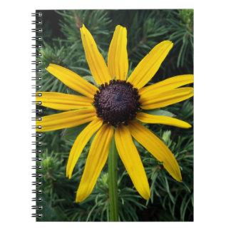 Flor observada negro del MD de Susan Cuadernos