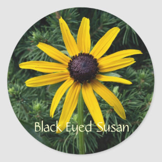 Flor observada negro del MD de Susan Pegatina Redonda