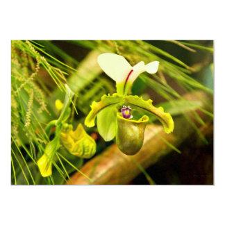 Flor - orquídea - insigne del Paphiopedilum Invitaciones Personalizada