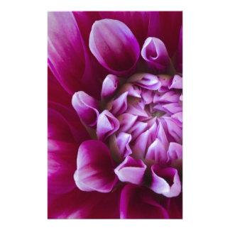 flor papelería