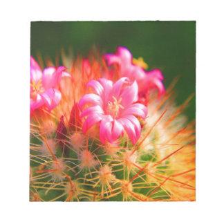 Flor pegajosa del cactus de los cactus de la belle bloc de papel