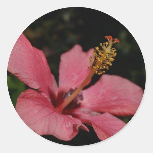 Flor Pegatina Redonda