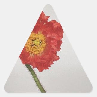 Flor Pegatina Triangular