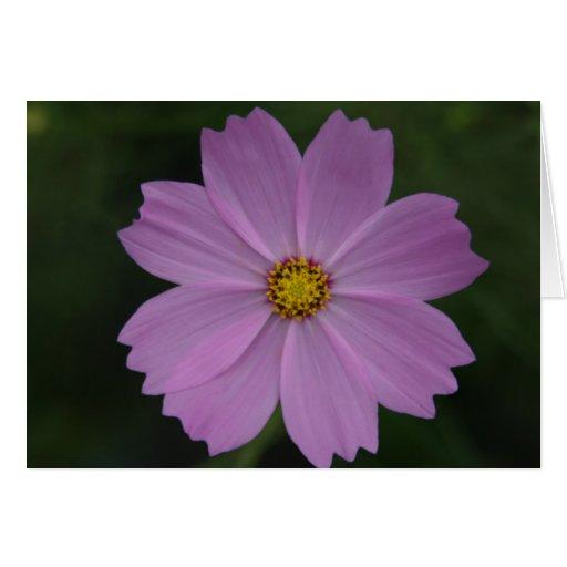 flor perfecta tarjeta de felicitación