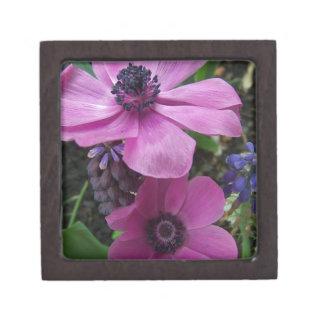Flor perfectamente rosado de la anémona cajas de regalo de calidad
