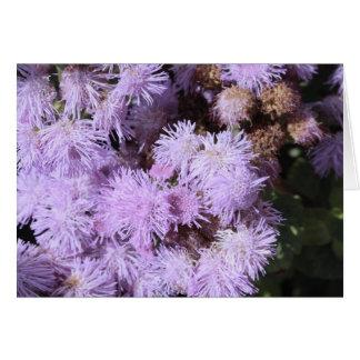 flor plumosa de la lila tarjeta pequeña