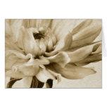 Flor poner crema de la dalia - fondo floral de las tarjetón
