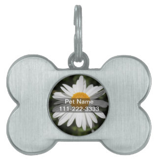 flor popular, fotografía salvaje bonita de la placas de nombre de mascota