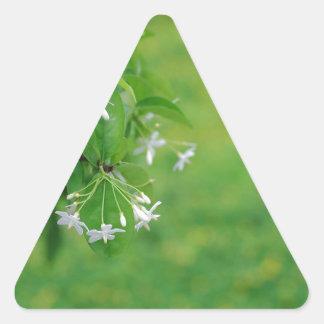 Flor preciosa pegatina triangular