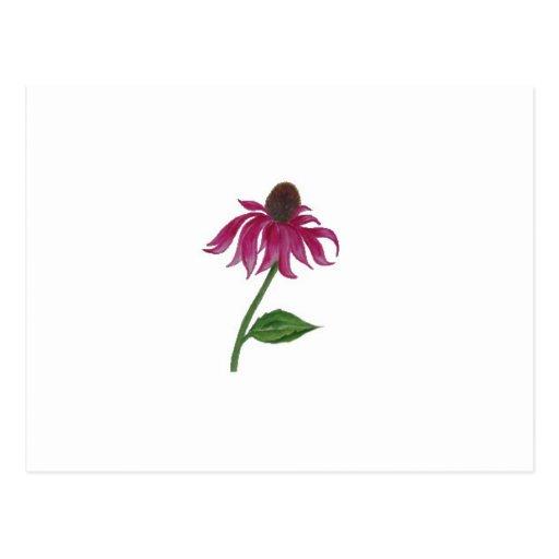 Flor preciosa rosada tarjetas postales