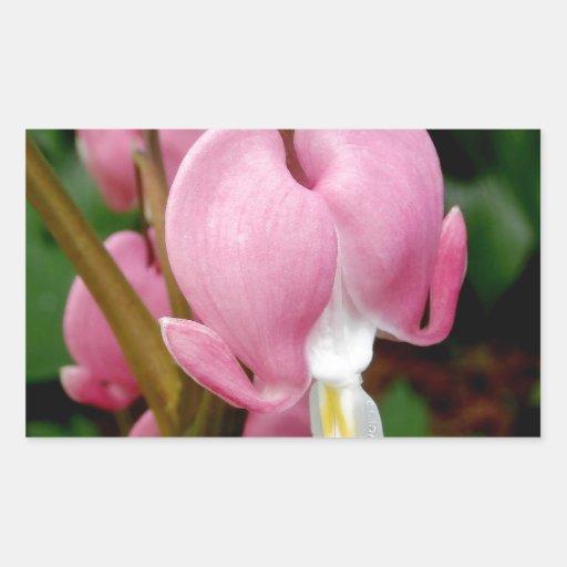 Flor precioso del corazón sangrante rectangular pegatinas