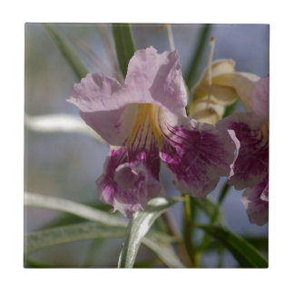 Flor púrpura azulejo cuadrado pequeño