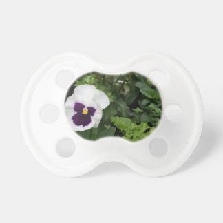 flor púrpura blanca del pensamiento contra verde chupete de bebe