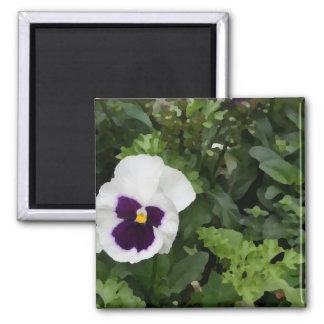 flor púrpura blanca del pensamiento contra verde iman de frigorífico