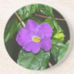 Flor púrpura bonita contra fondo oscuro posavasos cerveza