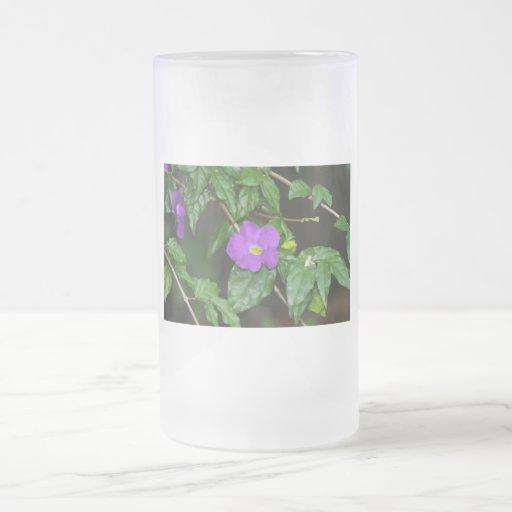 Flor púrpura bonita contra fondo oscuro taza