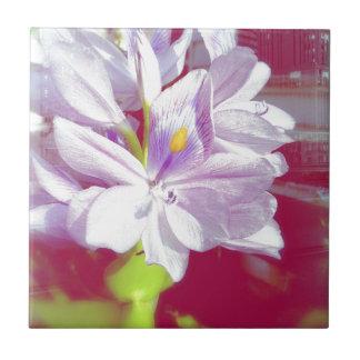 Flor púrpura bonita de la planta de la charca azulejo cuadrado pequeño