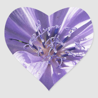 Flor púrpura bonita pegatina en forma de corazón