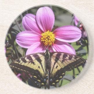 Flor púrpura brillante con la mariposa en los péta posavasos para bebidas