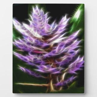 Flor púrpura brillante del fractal placas con foto