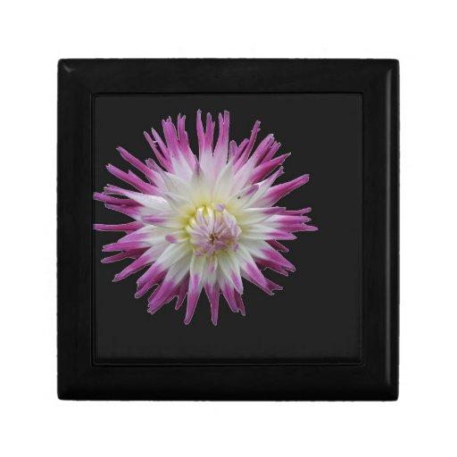 Flor púrpura cajas de regalo