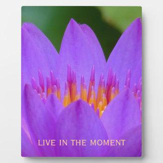 Flor púrpura con cita de la vida placa