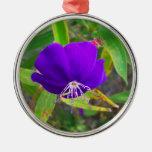 flor púrpura contra diseño de instalaciones verde adorno para reyes