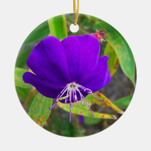 flor púrpura contra diseño de instalaciones verde adorno de reyes