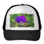 flor púrpura contra diseño de instalaciones verde gorras