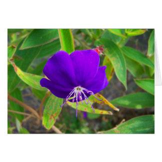 flor púrpura contra diseño de instalaciones verde tarjeta