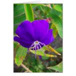 flor púrpura contra diseño de instalaciones verde tarjetas