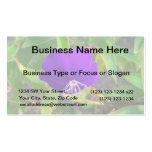 flor púrpura contra diseño de instalaciones verde tarjetas de negocios