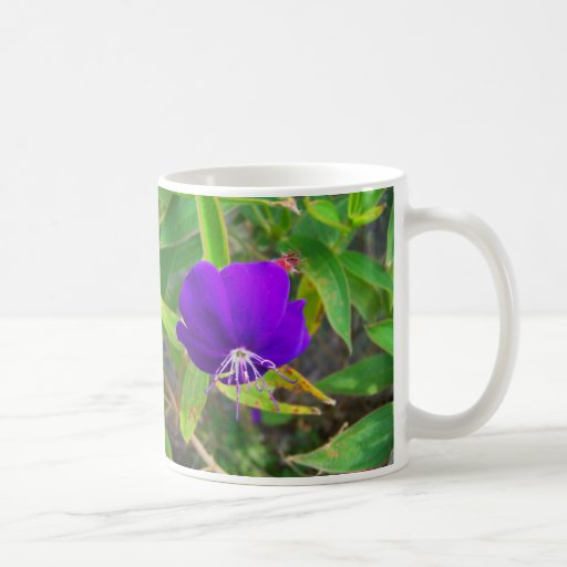 flor púrpura contra diseño de instalaciones verde taza de café
