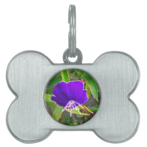 flor púrpura contra efecto pintado verde placa de nombre de mascota
