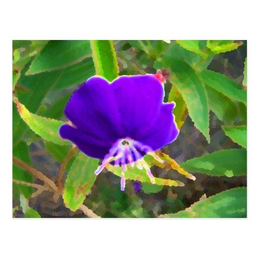 flor púrpura contra efecto pintado verde postal