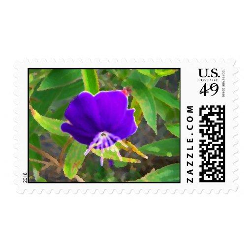 flor púrpura contra efecto pintado verde sellos