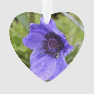 Flor púrpura de la anémona