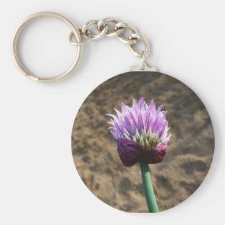 Flor púrpura de la cebolleta en la floración llavero redondo tipo pin