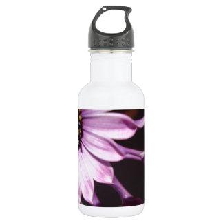 Flor púrpura de la cuchara