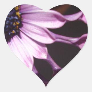 Flor púrpura de la cuchara pegatina en forma de corazón
