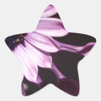 Flor púrpura de la cuchara pegatina en forma de estrella