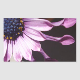 Flor púrpura de la cuchara pegatina rectangular