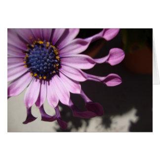 Flor púrpura de la cuchara tarjeta de felicitación