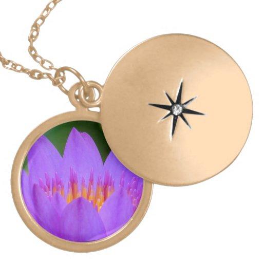 Flor púrpura de la flor del lirio de agua pendiente