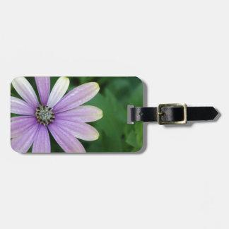 Flor púrpura de la margarita con una indirecta del etiquetas bolsas